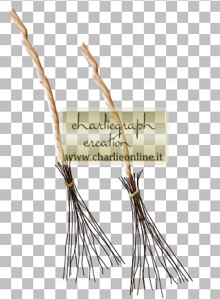 http://www.charlieonline.it/MyScrapingBook/BlogTrain/OctoberGhostTrain/ch-WichesBromes.jpg