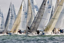 J/80s sailing on Chesapeake Bay
