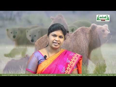 9th English Little Cyclone :The Story of a Grizzly Cub Supplementary Unit 5 Part 1 Kalvi TV