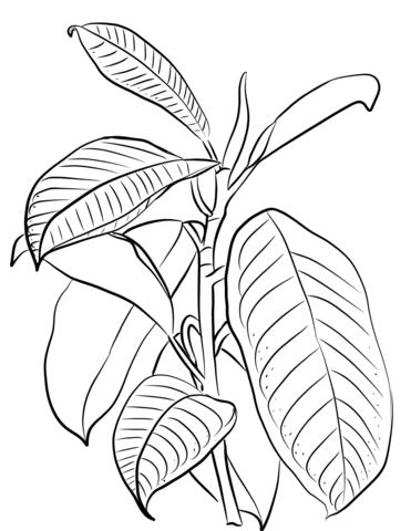 Dibujos De Arboles Para Colorear 027