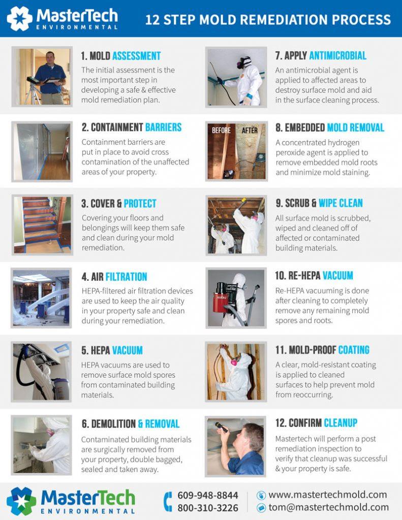 attic mold removal process nj 791x1024