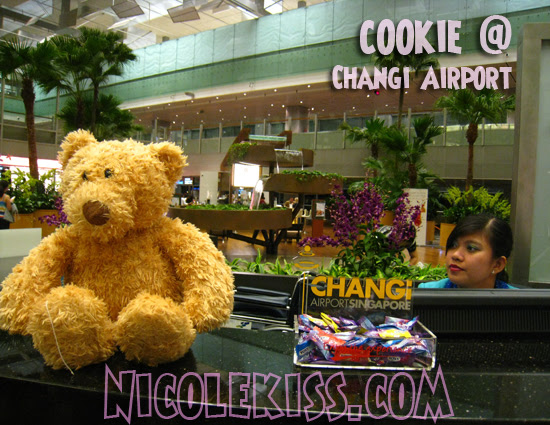 cookie at changi airport