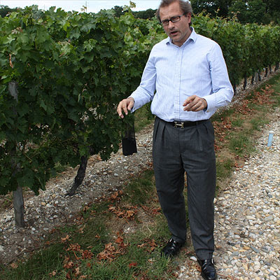 Vincent Mulliez showing the Belle-Vue vineyard