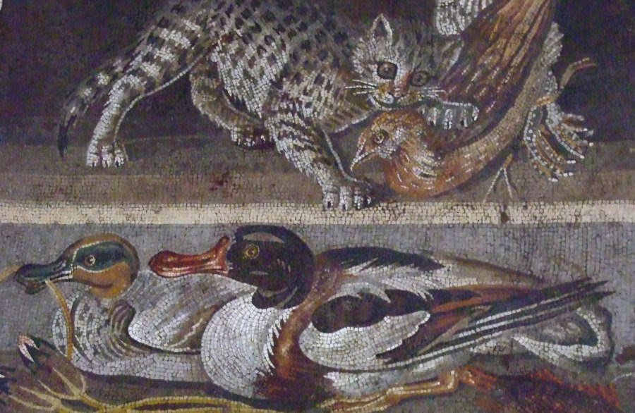 Roman Wall Painting Sea Creatures