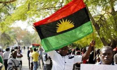 Image result for ipob