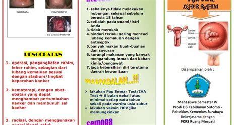 kumpulan materi kebidanan sap  leaflet kanker serviks