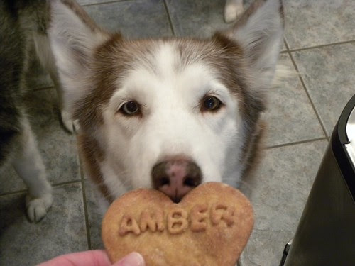 Ammy with her cookie