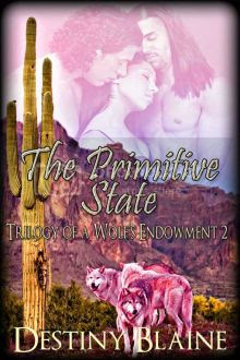 The Primitive State Book 2 Cover photo 3836THEPRIMITIVESTATE510-220x330.jpg