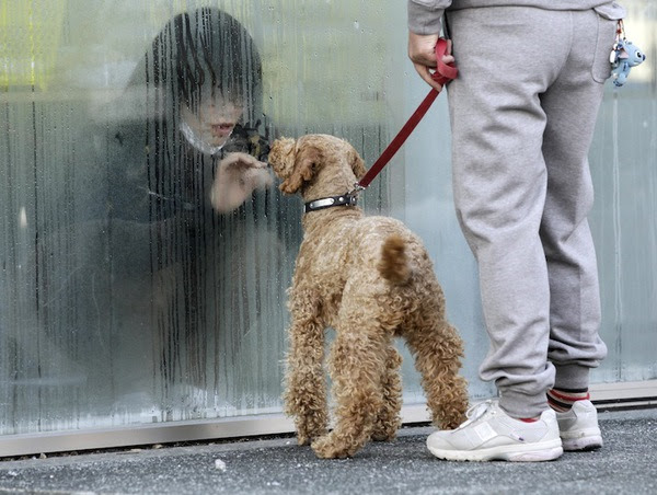 A Japanese girl, isolated due to radiation, greets her dog through a window.