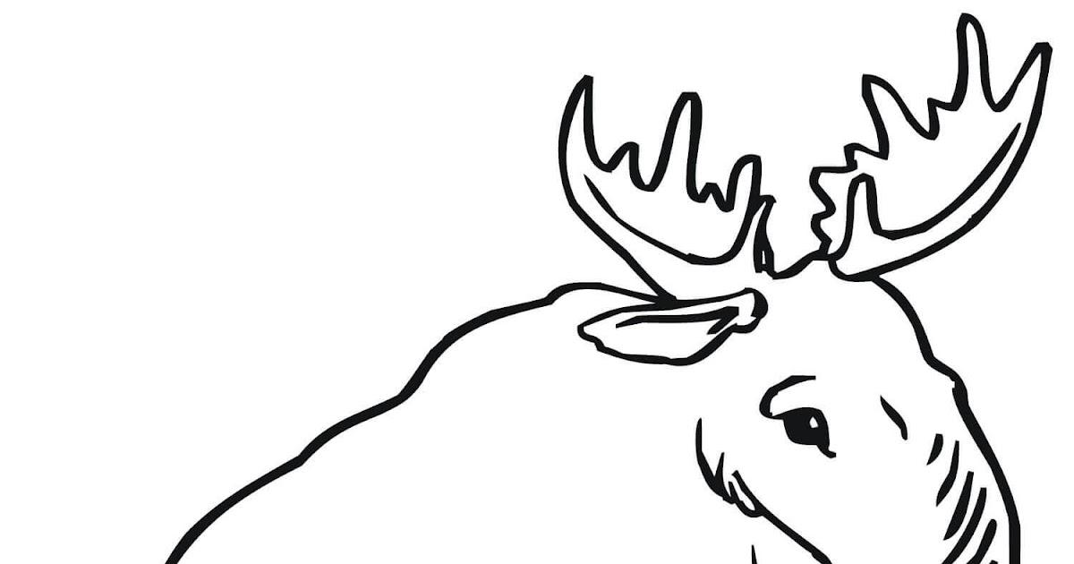 35 elch zum ausmalen  besten bilder von ausmalbilder