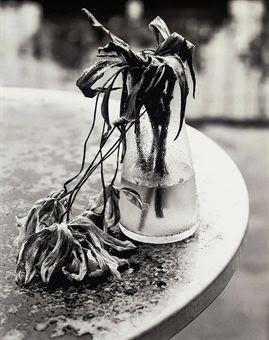 Untitled Dead Flowers In Vase By Nobuyoshi Araki On Artnet
