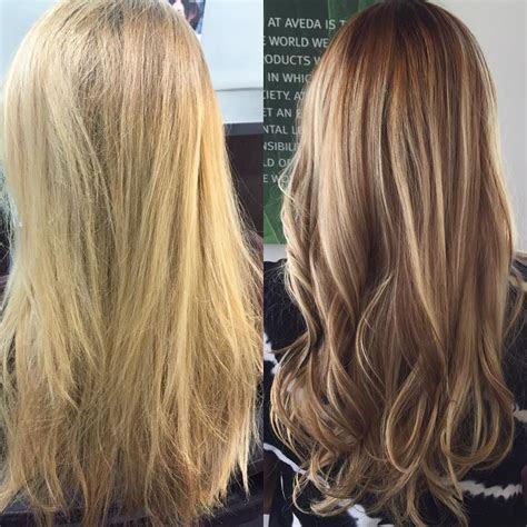 blonde  brunette highlights
