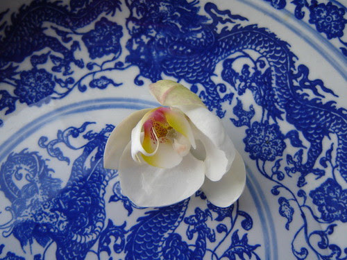 Blue and white by Anna Amnell
