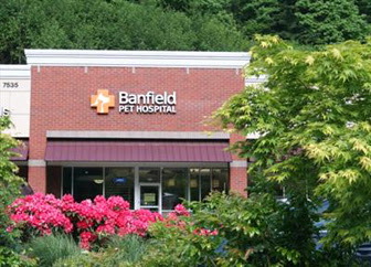 Banfield expansion brings new stand-alone clinics - VIN