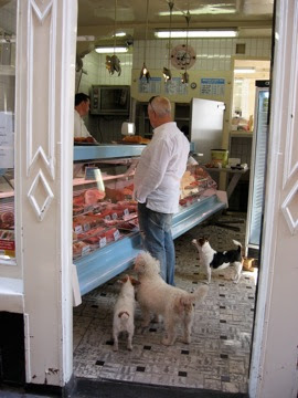 Classic shot: Dogs at the butcher