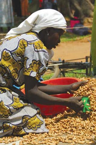 Foires aux Semences en Ouganda et en République Démocratique du Congo