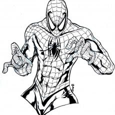 4700 Top Spider Man Suit Coloring Pages  Images