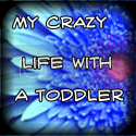 mycrazylifewithatoddler
