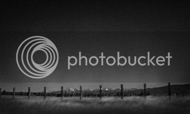 http://i892.photobucket.com/albums/ac125/lovemademedoit/_AIS2989.jpg?t=1314551442