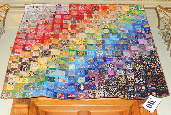 I Spy Quilt by Dr. Cajah Sullivan Reed