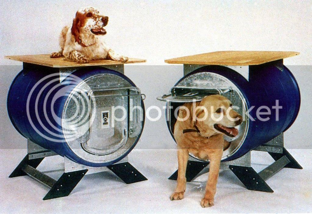 Ukc Forums Plastic Barrel Dog House Pics