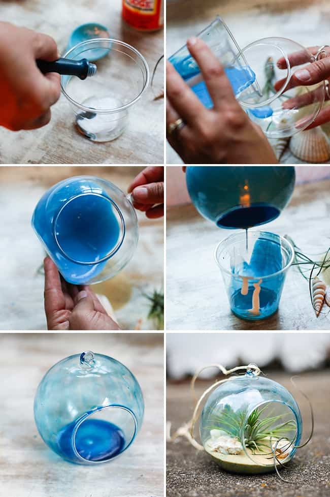 How to make a beach terrarium