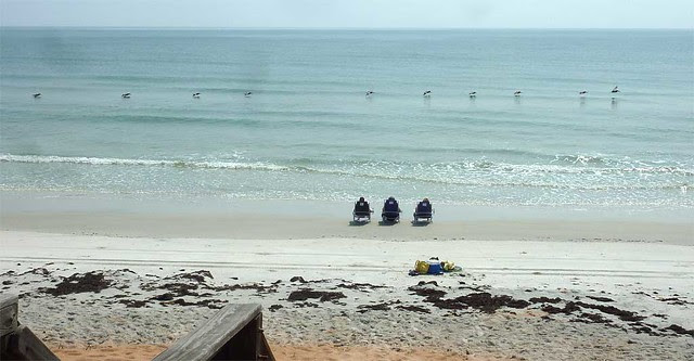P1110957-2011-06-18-Ormond-By-The-Sea-Beach-RK-JK-DMc-Sisters-Pelicans
