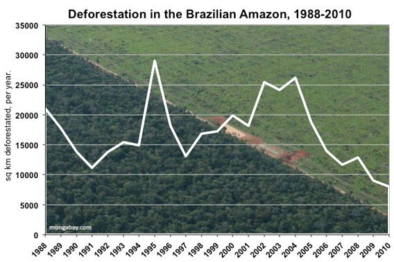 deforestation in brazil's amazon rainforest since 1988