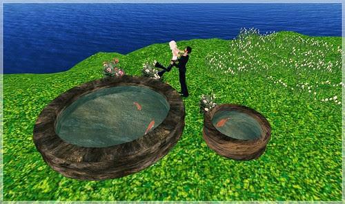 Review - Pocket Gardens - Castalia Basin with Koi, both