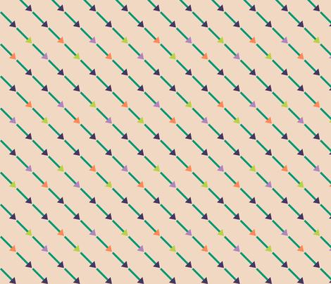 Bias Arrows