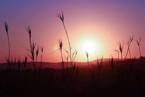 Free photo: Sunset, Silhouette, Landscape   Free Image on