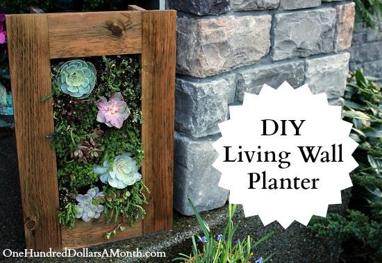 DIY Sedum and Succulent Living Wall Planter | One Hundred Dollars ...