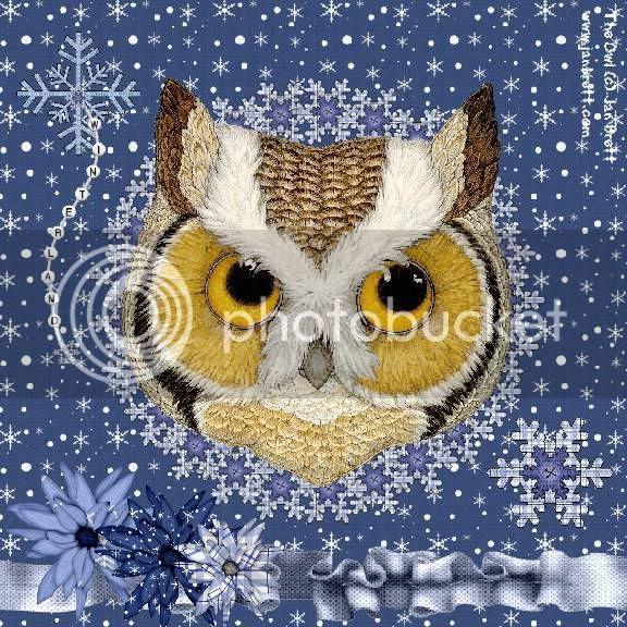 Owl,Winter