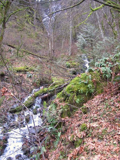 Shady Creek Falls