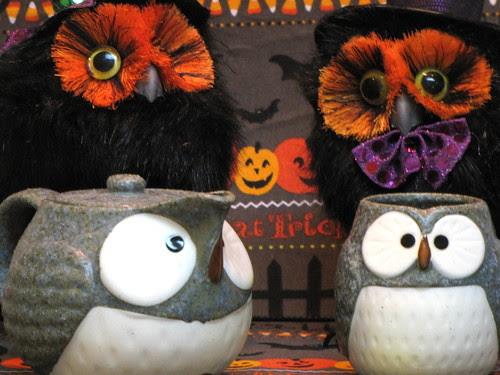 Owls for Tea