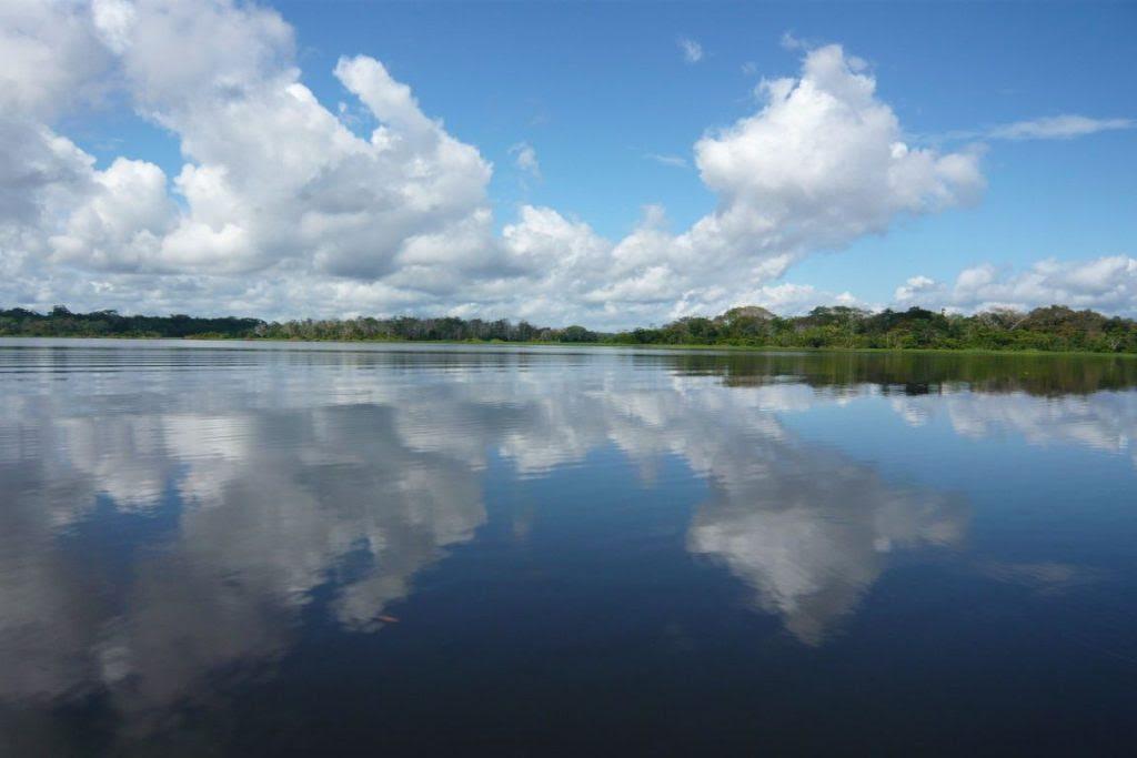 Imagem do rio Amazonas na Colômbia. Rio percorre 8 países. Foto: Andrés M./Flickr.