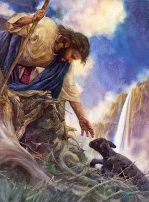 Good Shepherd 7