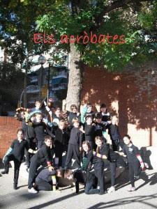 acrobacies-3r-a_450x600