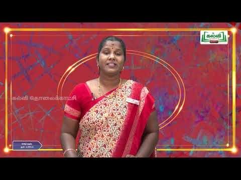 12th Micro Biology மருத்துவ வைராலஜி Q A Kalvi TV