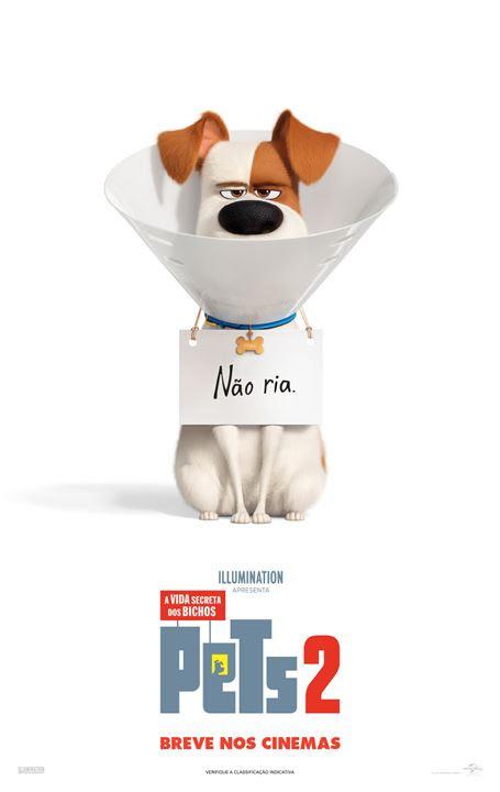 Pets - A Vida Secreta dos Bichos 2 : Poster