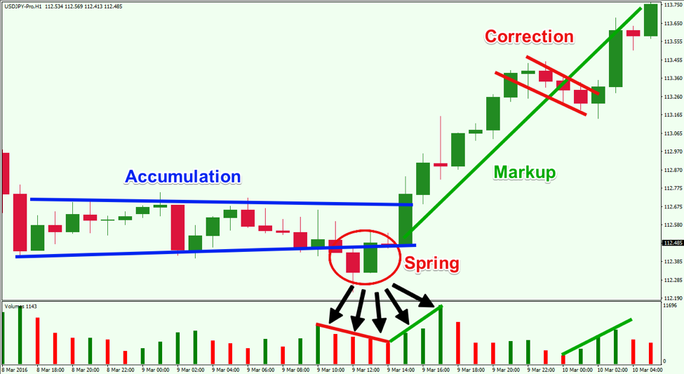 Advanced Price Action Trading Course - Tradeciety Online Trading