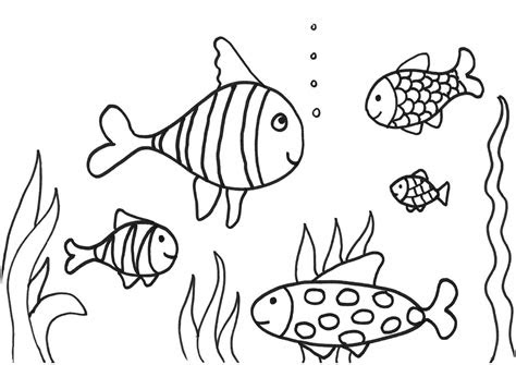 simple fish coloring pages   print