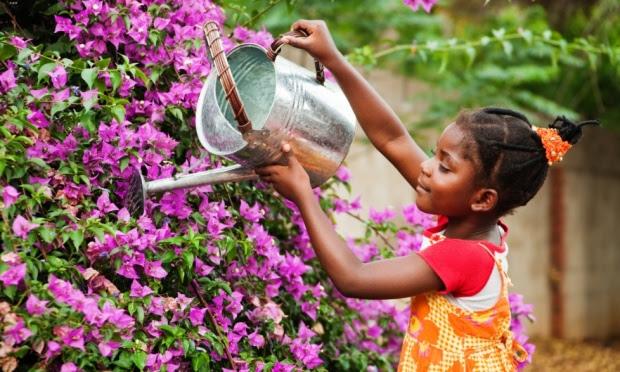 Resultado de imagem para cuidando das flores no jardim