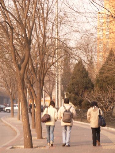 street in beijing之襯色