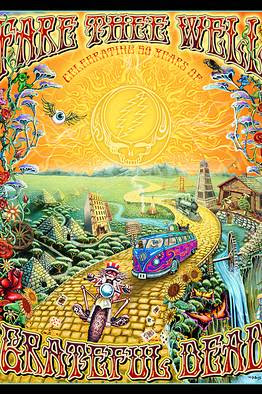 Grateful Dead 50th Anniv. Fare Thee Well 2015 - Mike
