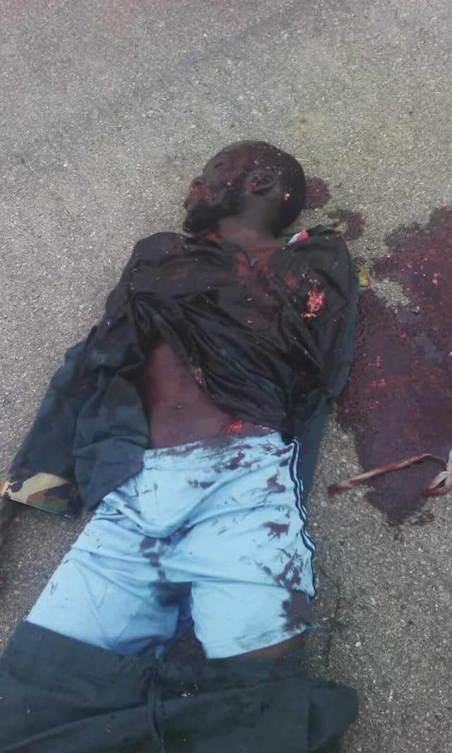 Troops Kill 2 Fleeing Boko Haram Terrorists In Pulka,Recover Ammunitions pics