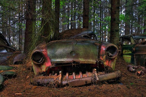 Chatillon-car-cemitério abandonado-carros-cemitério-Bélgica-7