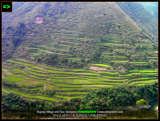 Bugnay Rice Terraces