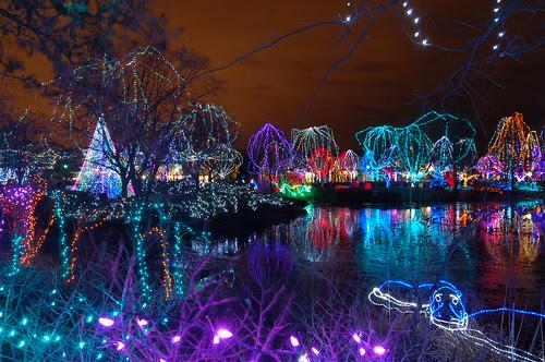 Christmas Lights Zoo Columbus | Christmas Ideas