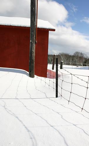 The Fenceline